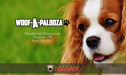 Woof-A-Palooza Vaughan's Premier Festival for Dogs