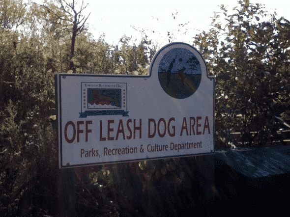 richmond_hill_off_leash_dog_area