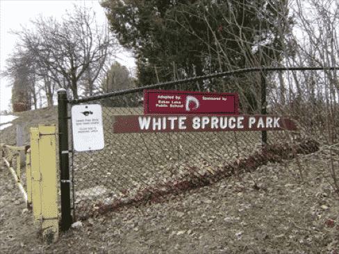 white_spruce_park