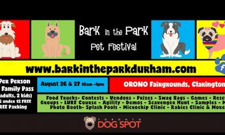 It's Time to Bark in The Park!