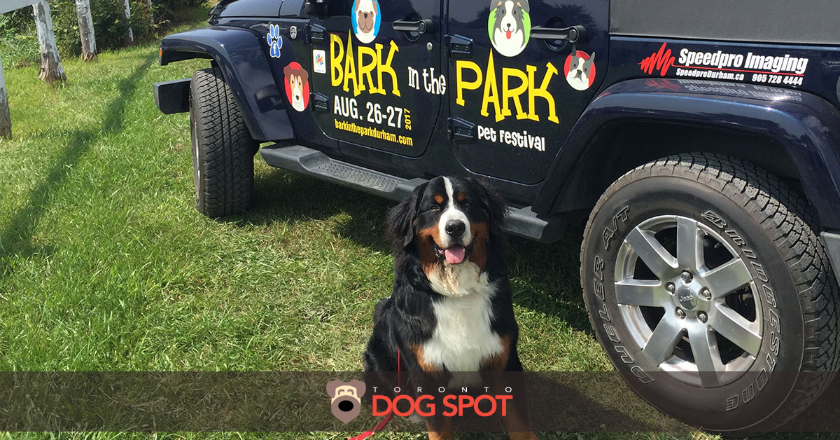 2017 Bark in the Park Durham Dog Festival Review