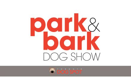 "Toronto's Newest Dog Festival ""Park & Bark"" Opens This Weekend"