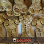 Great Halloween Treats for your Tricky Pup
