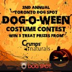 2nd Annual Toronto Dog Spot Dog-O-Ween Costume Contest